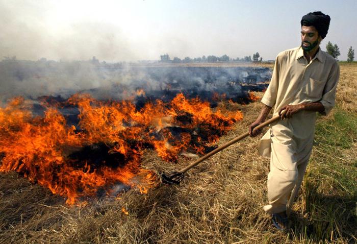 Agricultural waste burning