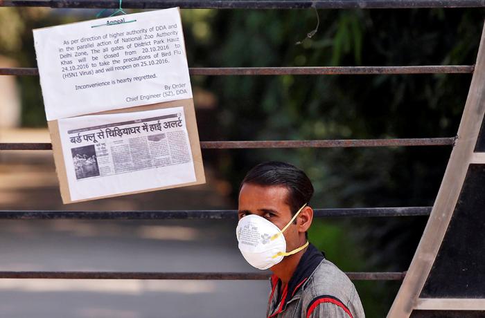 Delhiites Face No Threat From New Bird Flu Strain As Of Now, Says Gopal Rai
