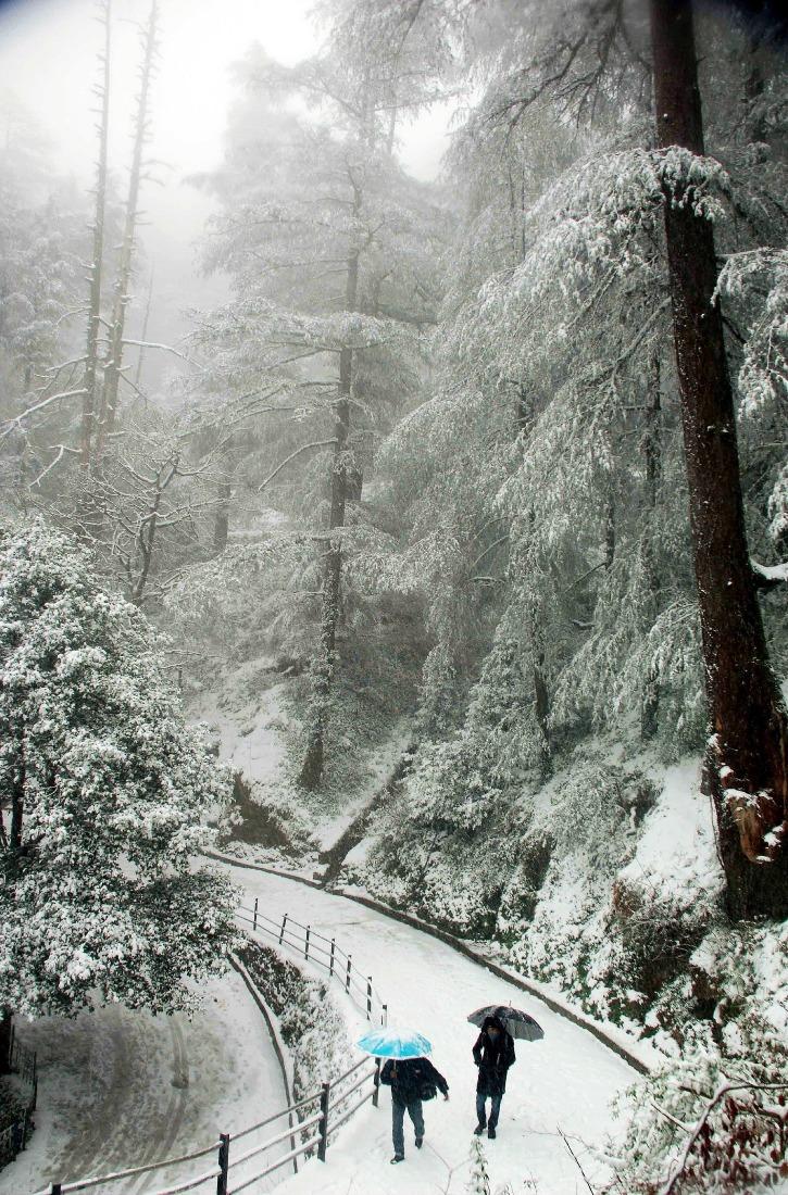 A walk through the snow in Gulmarg
