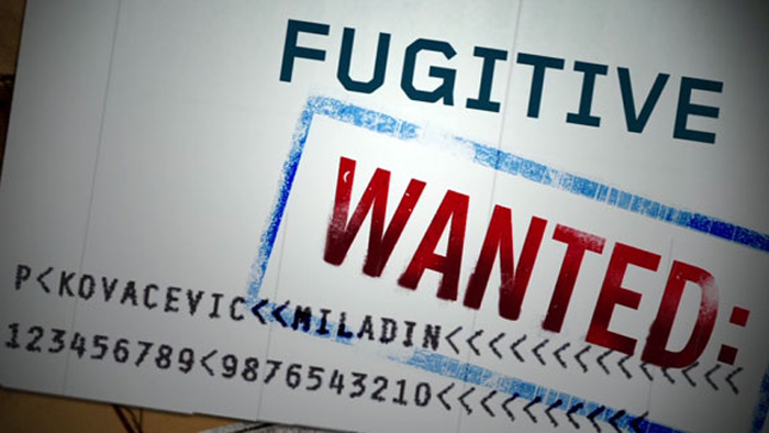 Be It Mallya, Dawood, or Hafeez Saeed-All Are Fugitives. Here Is All You Need To About Extradit