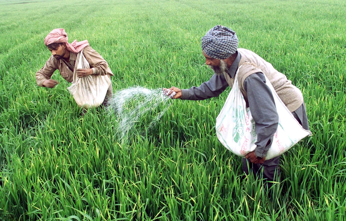 NRI to run Berlin Marathon for distressed Punjab farmers