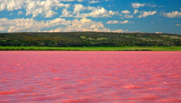 Lake Burlinskoye
