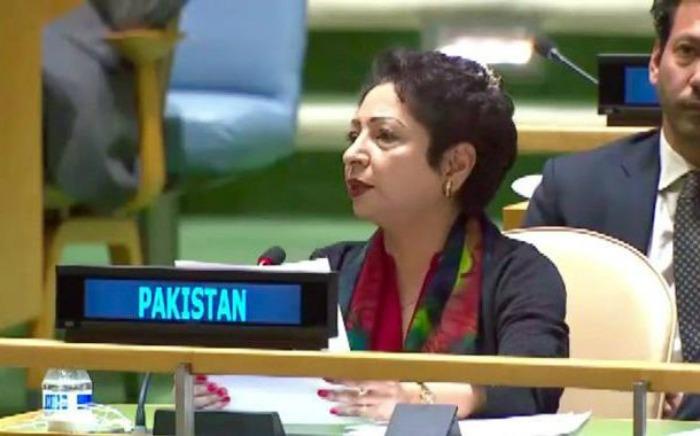 pakistani delegation at un