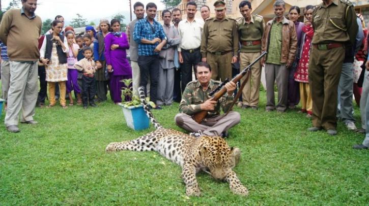 Man-eater leopard