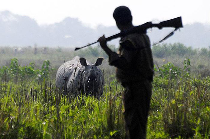 Two poachers killed in Assam