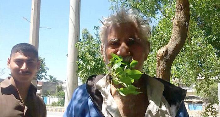 Pak man eats leaves