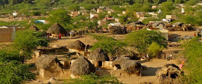Ramnagar Village Rajasthan