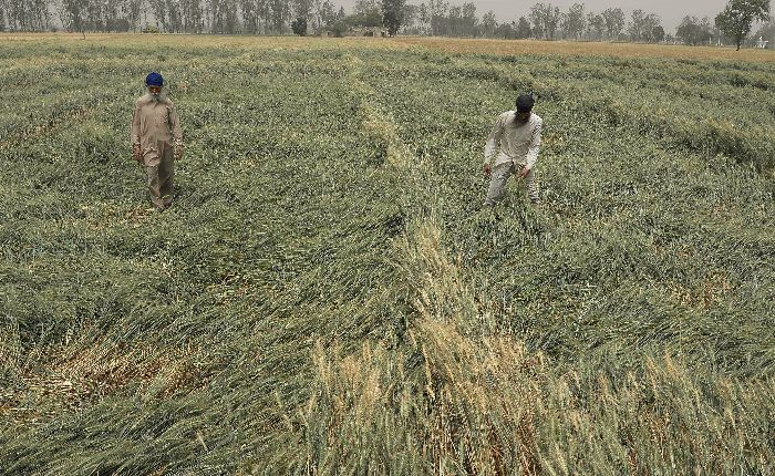 Taxing Agricultural Income