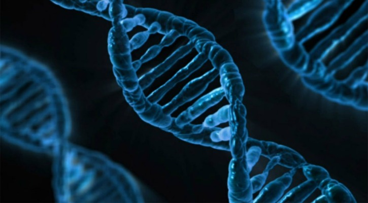 Just One Gram Of DNA Can Potentially Hold All The Data Stored On The Internet