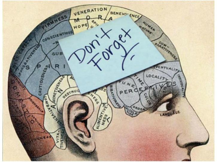 Lose out visual and verbal memories
