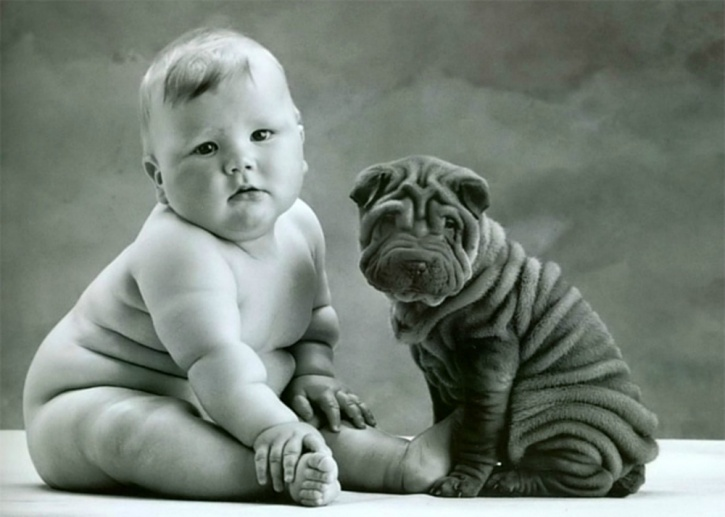 babies who were exposed to dogs prenatally had a greater likelihood of either one or two of the above bacteria.