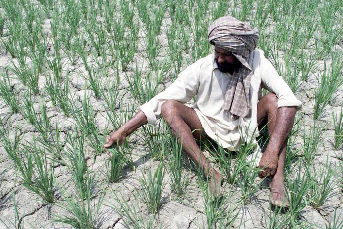 Climate Change Punjab