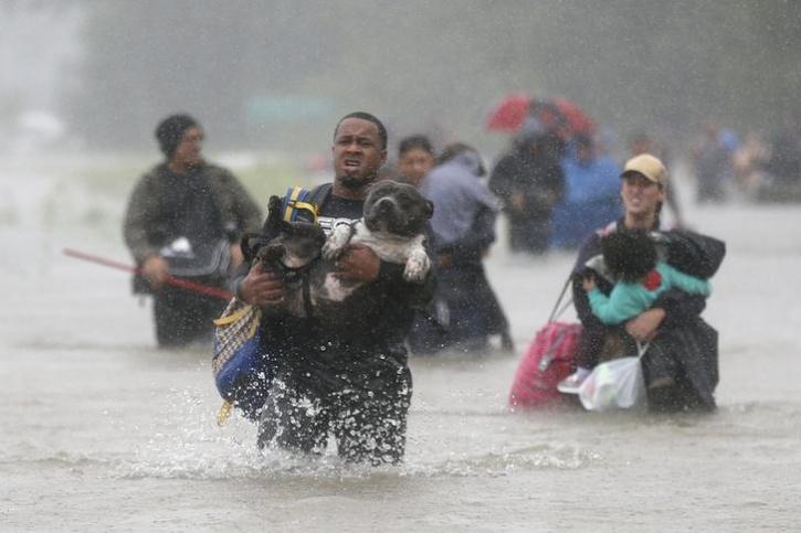 Texas Under Water