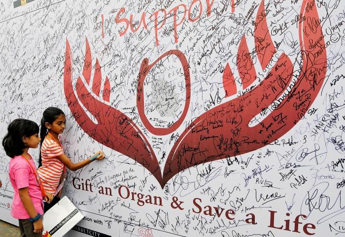 organ donation/representative image