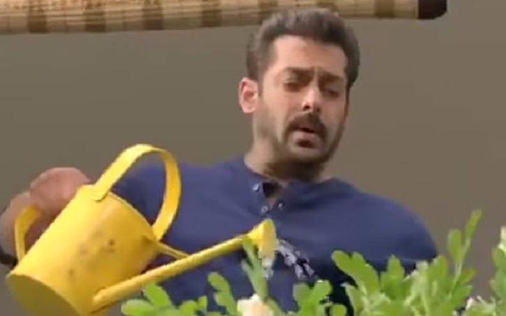 Bigg Boss 11, Salman Khan