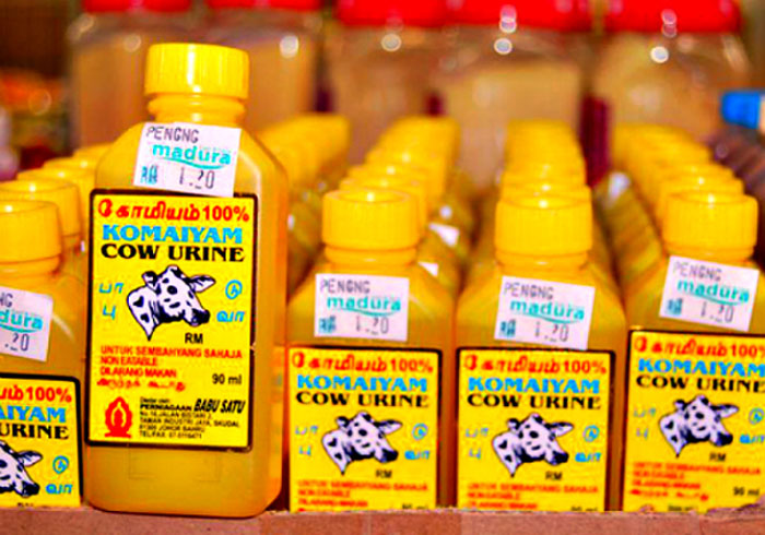 Research On Cow Products