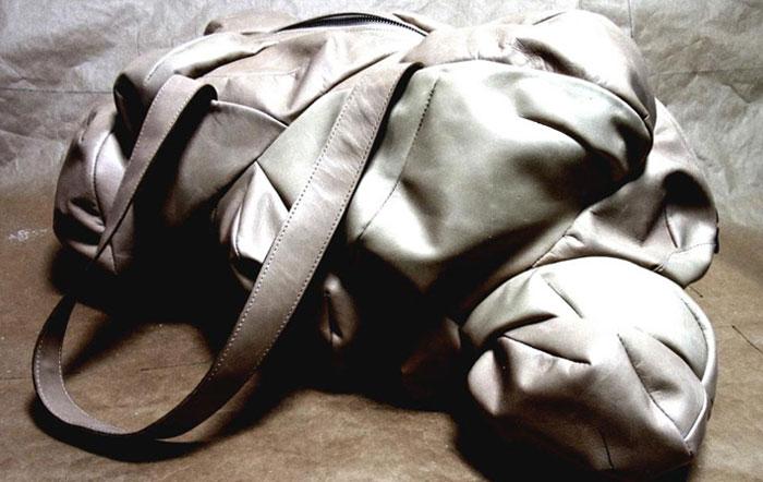 Foetus In A Bag