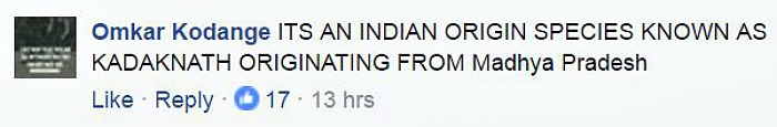 Indiatimes user
