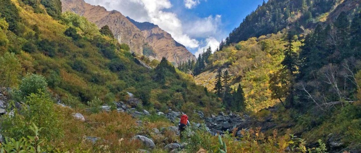 himalayanecotourism