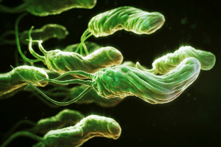Future looks promising on gut bacteria and Alzheimer