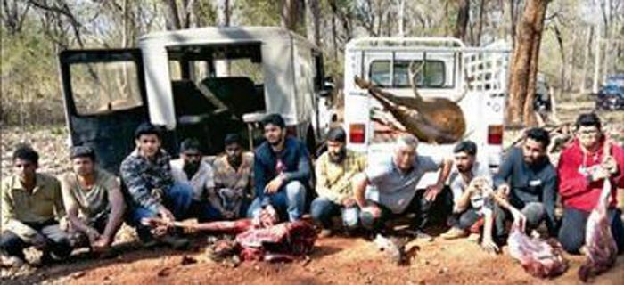 Gang shoots dead 2 sambar to ring in New Year