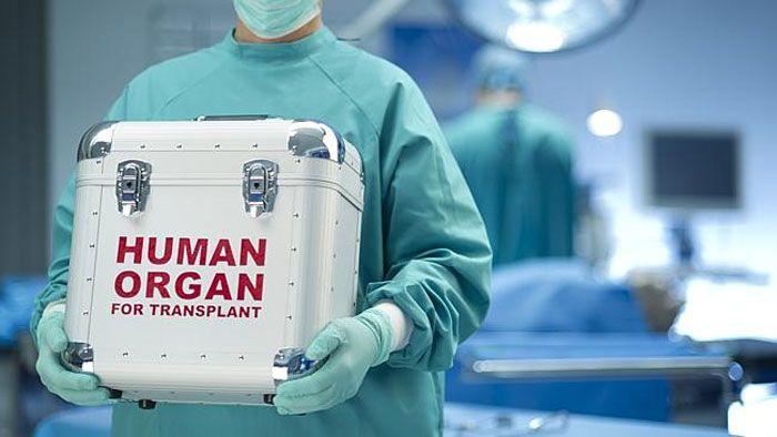 Transplant donates organ