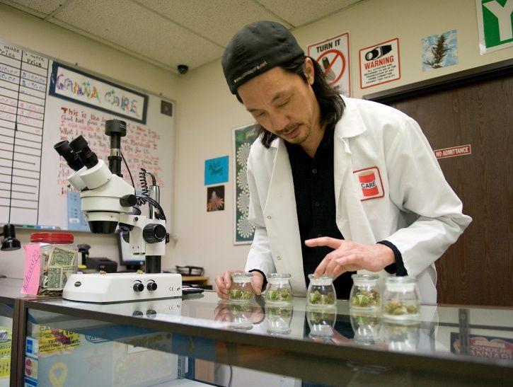 Marijuana studies