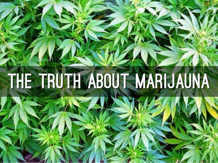 Marijuana the truth
