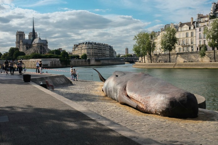 whale structure in Paris