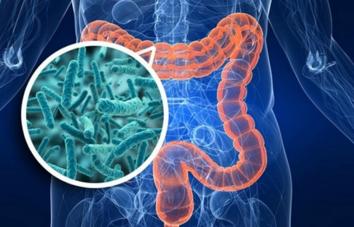 You are exposed to microbes when you are in your mother's womb and gut microbiome continues to diversify, as you grow older. The higher the diversity of your microbiome the better for your health