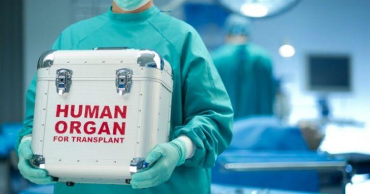 organtransplantliver