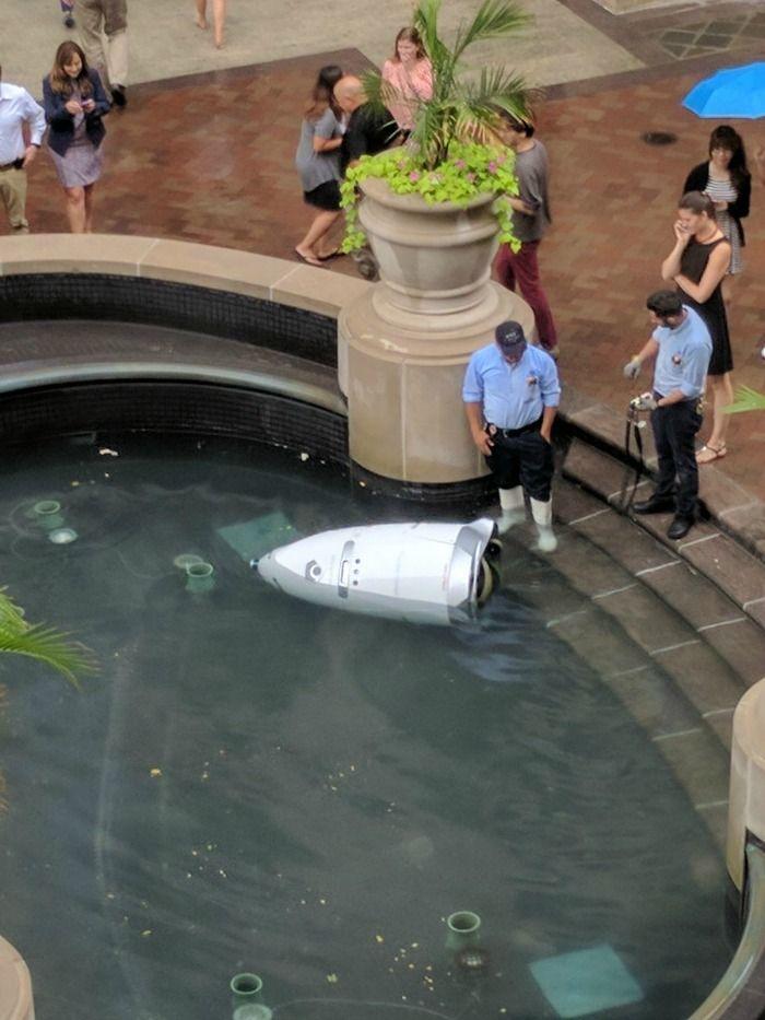 suicidal robot