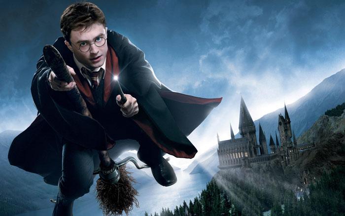 Harry Potter Magical Pub