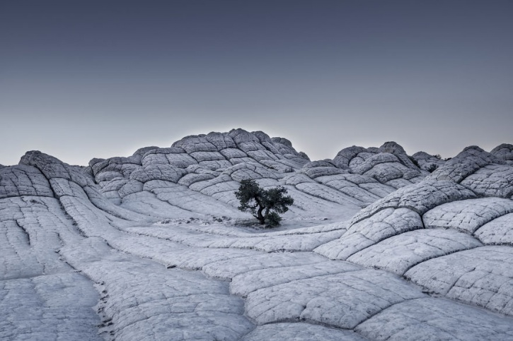 worldphoto.org