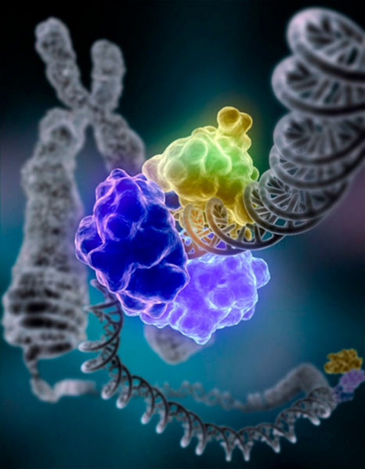 DNA mutations due to random copying