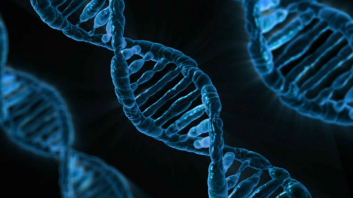 DNA cancer cells make errors and mutate