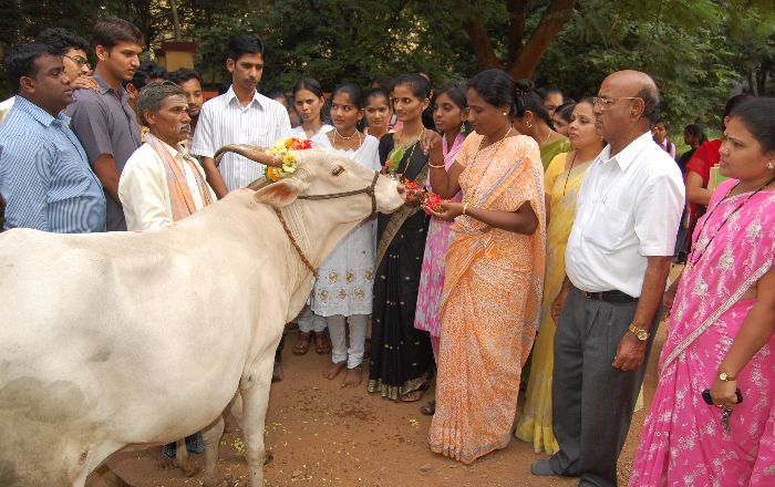 Government Bans Cow Slaughter Across India