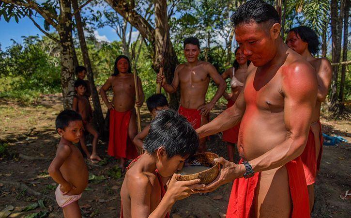 Waiapi