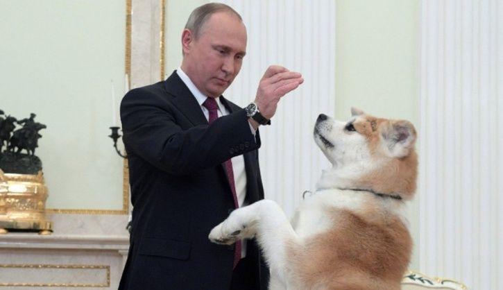 Putin and Yume