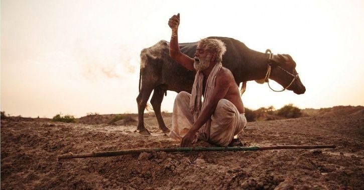 kadvi hawa ranvir shorey sanjay mishra-release