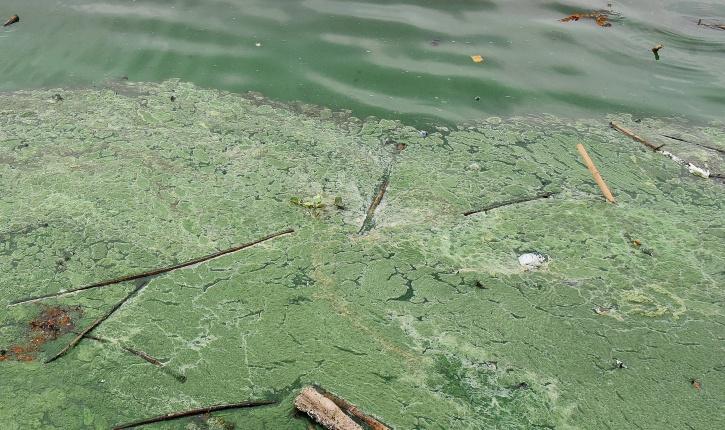 Ganidgudem lake