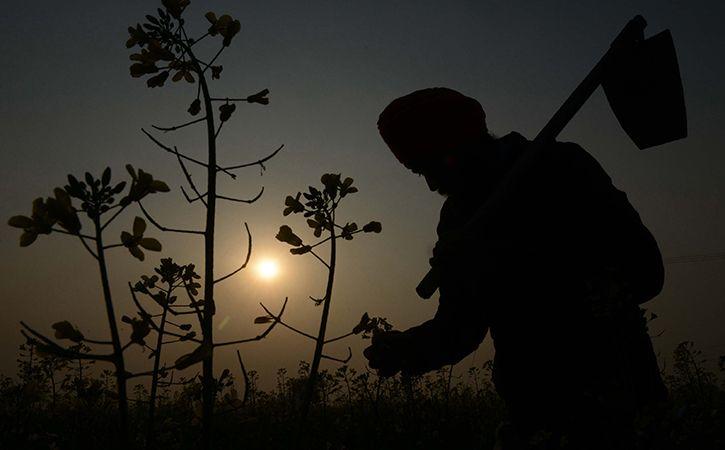 Debt Ridden Farmer Attempts Suicide