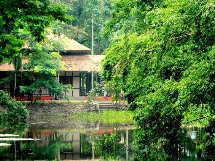 kaziranga Infinity resort
