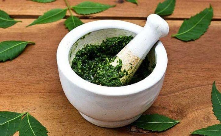 The 5 Incredible Health Benefits Of Having The Wonder Herb Neem
