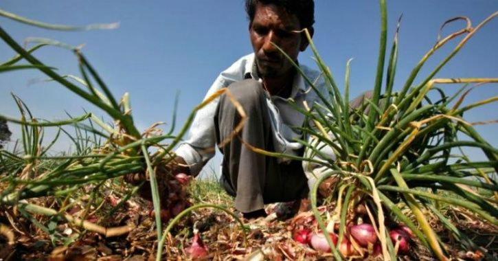 Farmer Invested Rs 2 Lakh To Produce 2,657 Kg Of Onion Crop, Earns Only Rs 6 & Sends It To CM Fadnav
