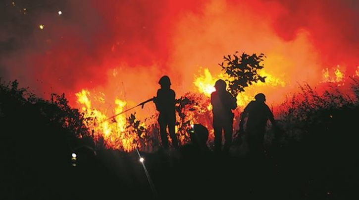 Four-Kilometre-Wide Fire Engulfs Aarey Forest While Mumbaikars Fight To Save It's Last Green Patch