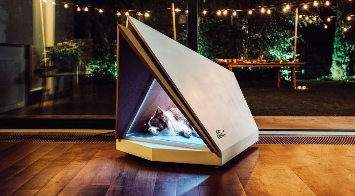 noise-cancelling dog kennel
