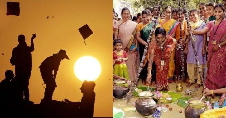 Pongal, festival
