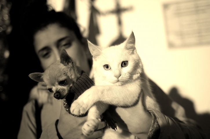 Girl with pets LGBT India