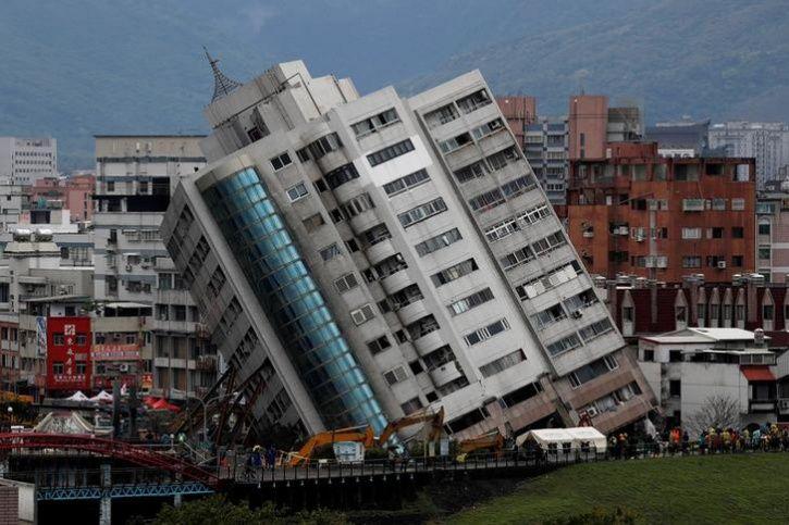 Taiwan Quake labrador sniffs